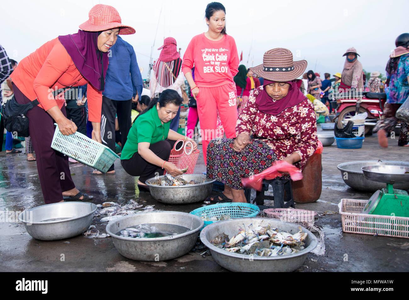 El mercado del pescado en Kampot, Camboya Foto de stock