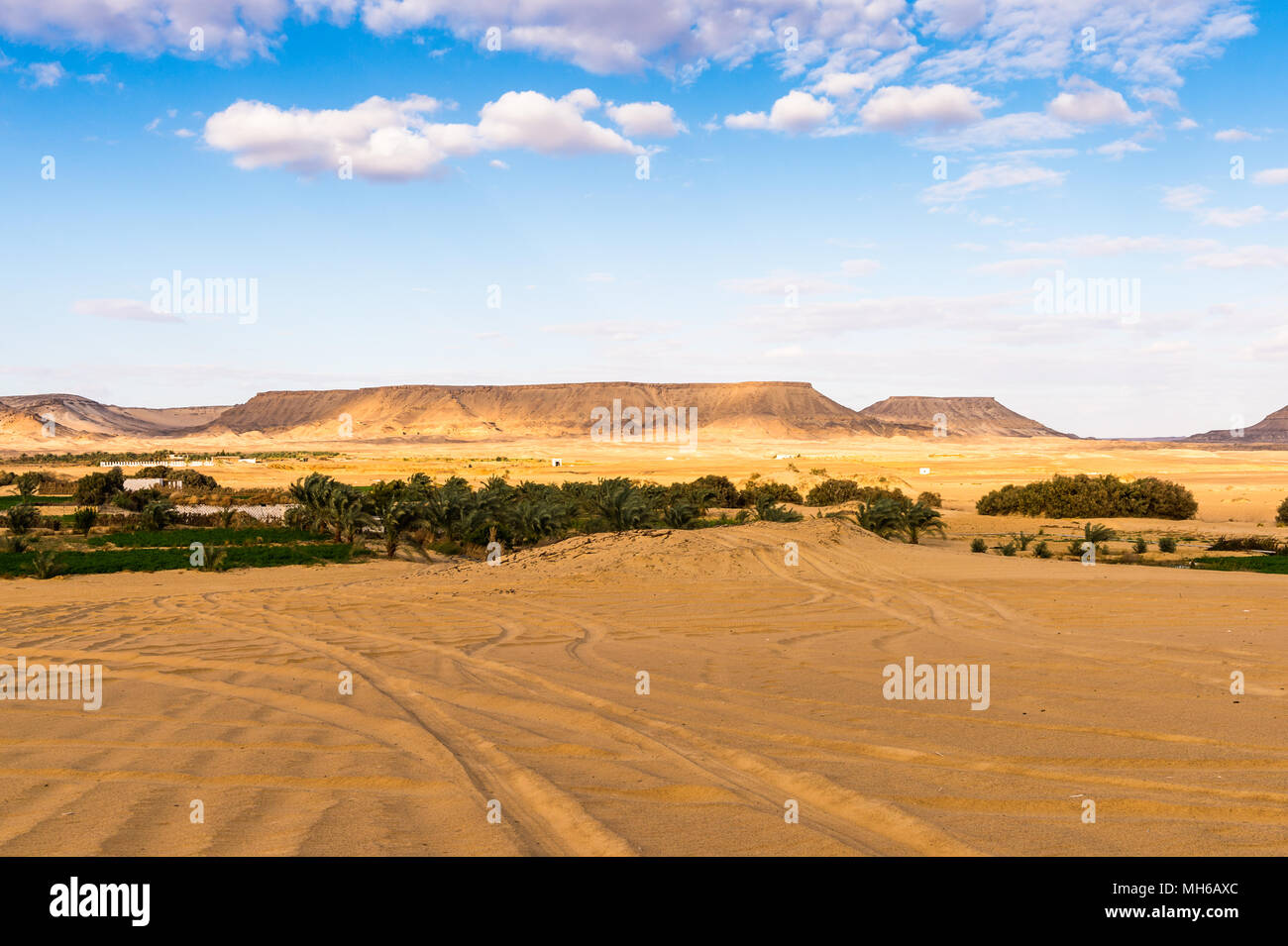 Oasis Bahariya, Egipto Imagen De Stock