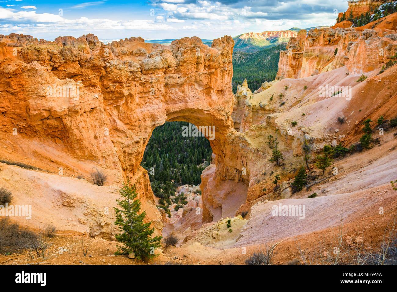 Bryce Canyon National Park, Utah, EE.UU. en el puente natural. Foto de stock