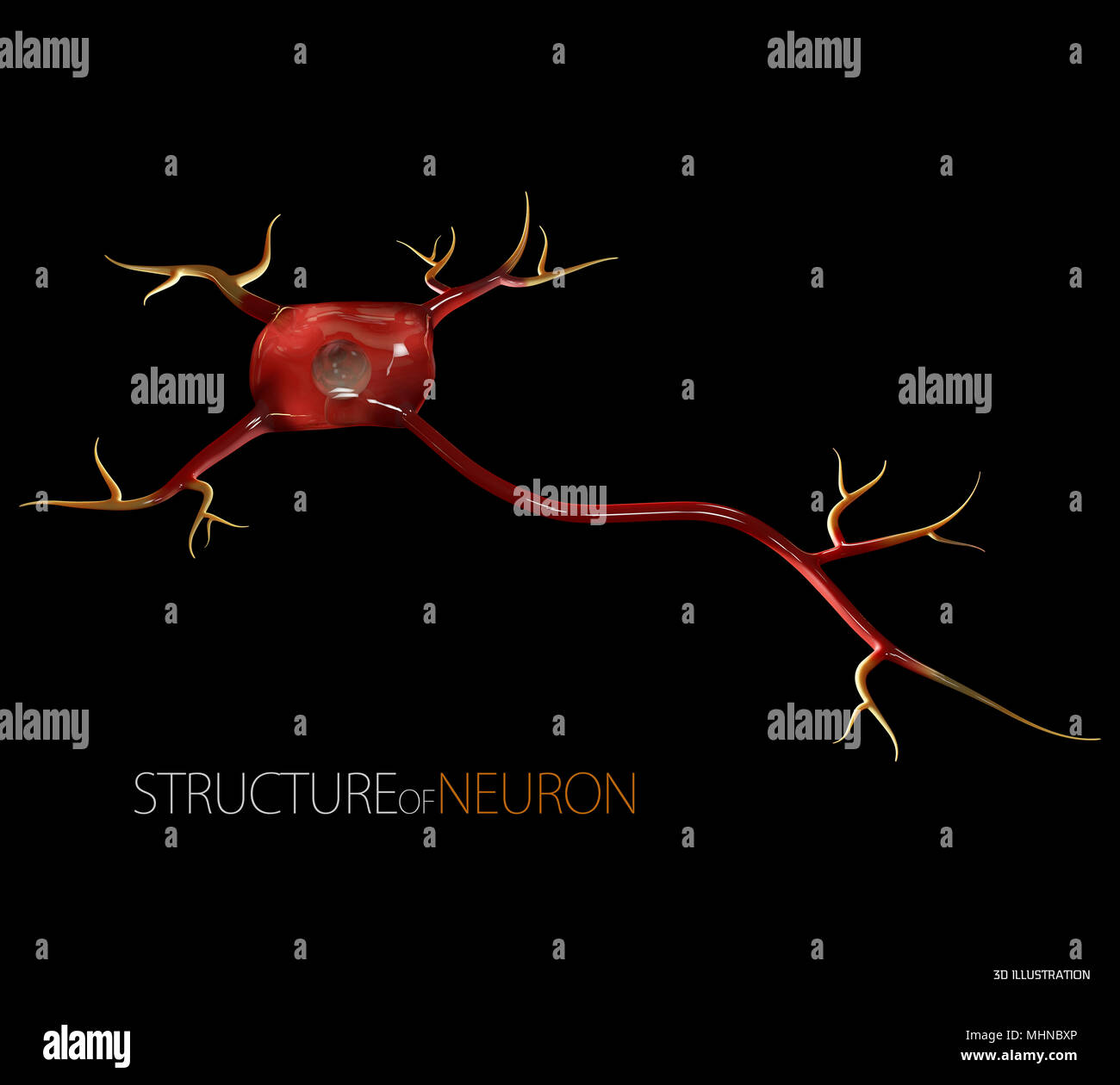 Ilustración 3d de células neuronales, alta resolución en 3D ilustración negro aislado Imagen De Stock
