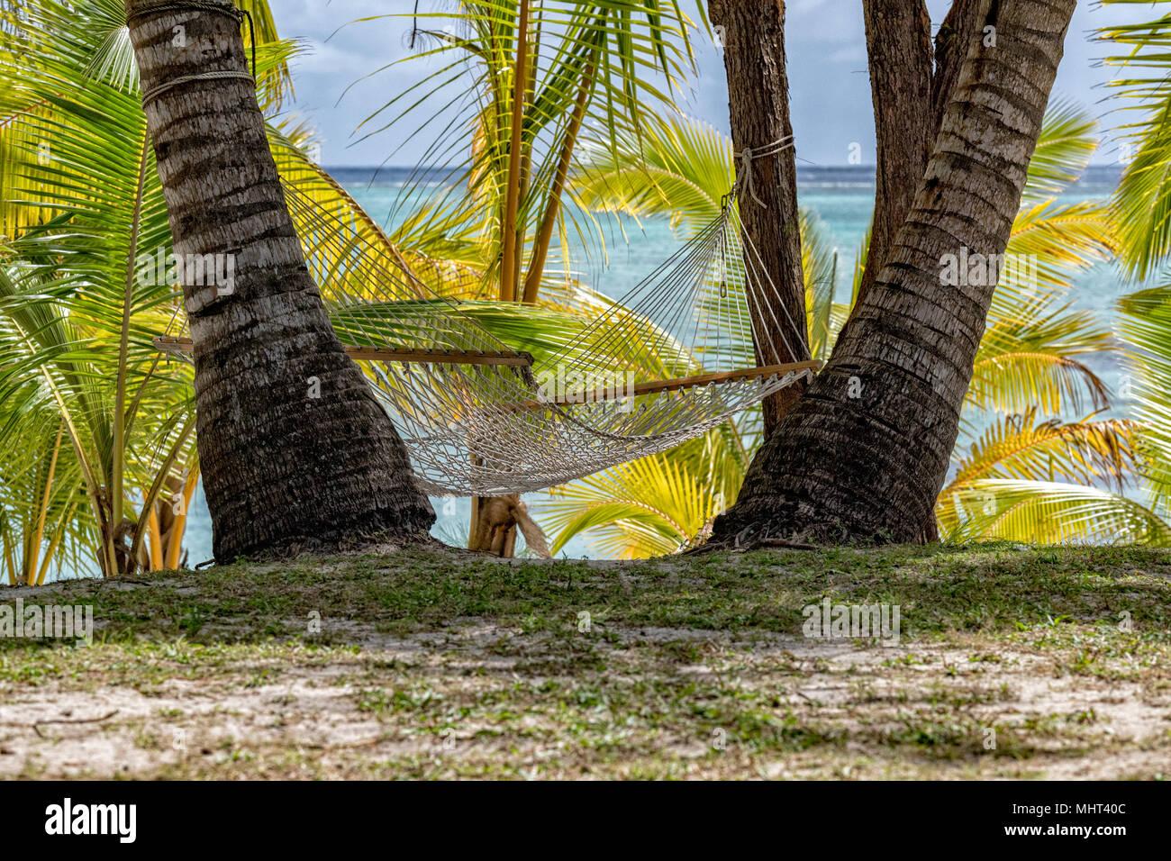 Hamaca en paraíso tropical polinesio, playa de arena blanca, agua transparente Foto de stock