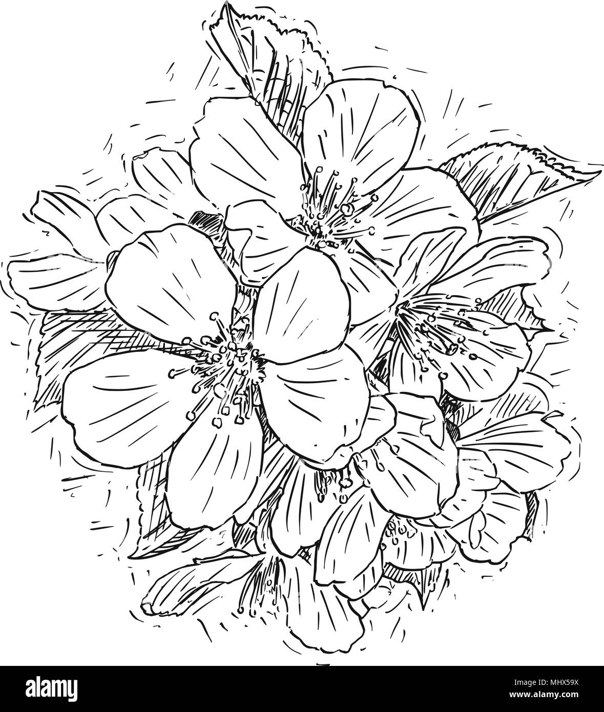 Ilustración Artística O Dibujo Vectorial Del Racimo De Flores De