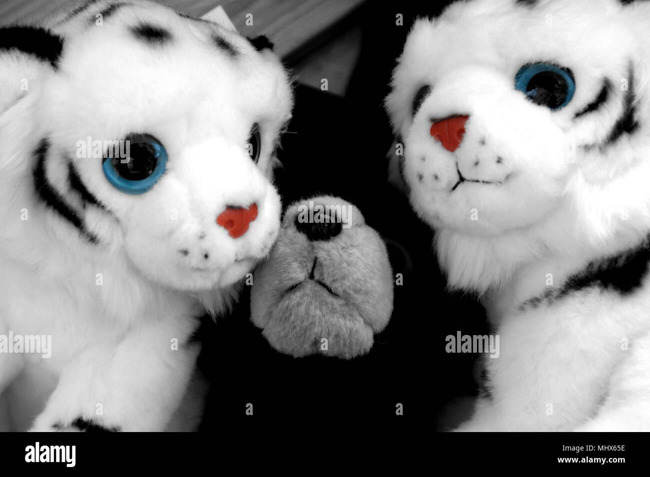 Pandas Juguete Abrazos Oso De Juguete Foto Imagen De Stock