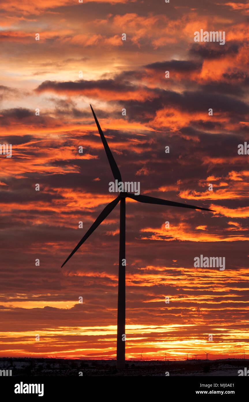 Turbinas de viento al atardecer, la energía eólica Foto de stock