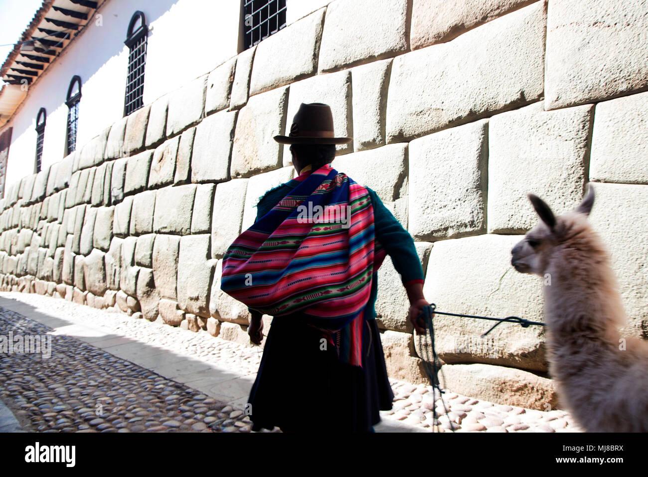 Vista trasera del hombre vistiendo coloridos poncho y sombrero de fieltro  marrón llama líder a lo aba317e4fa9