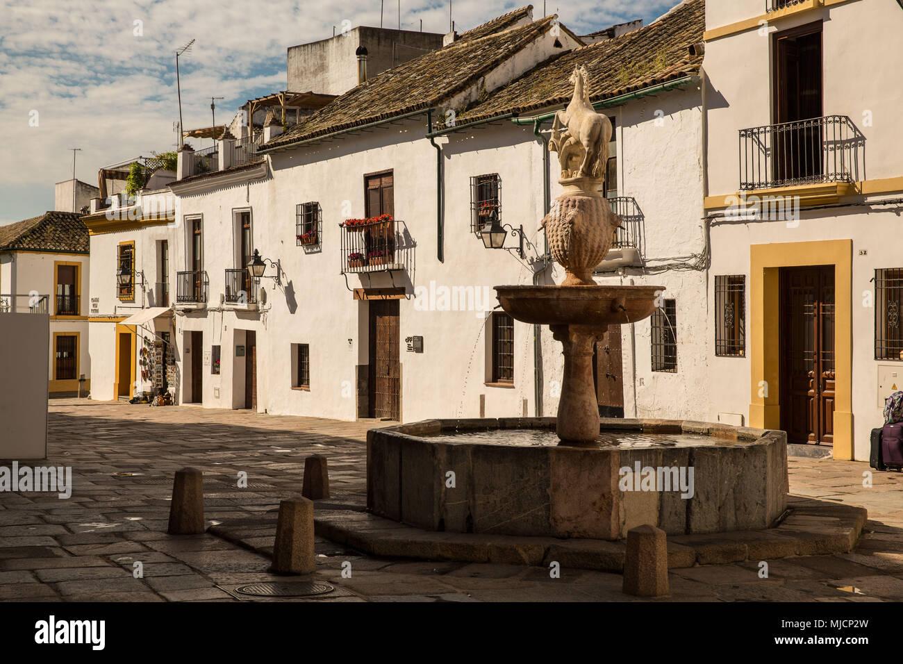 Europa espa a andaluc a c rdoba casas fuente foto - Inmobiliarias en cordoba espana ...