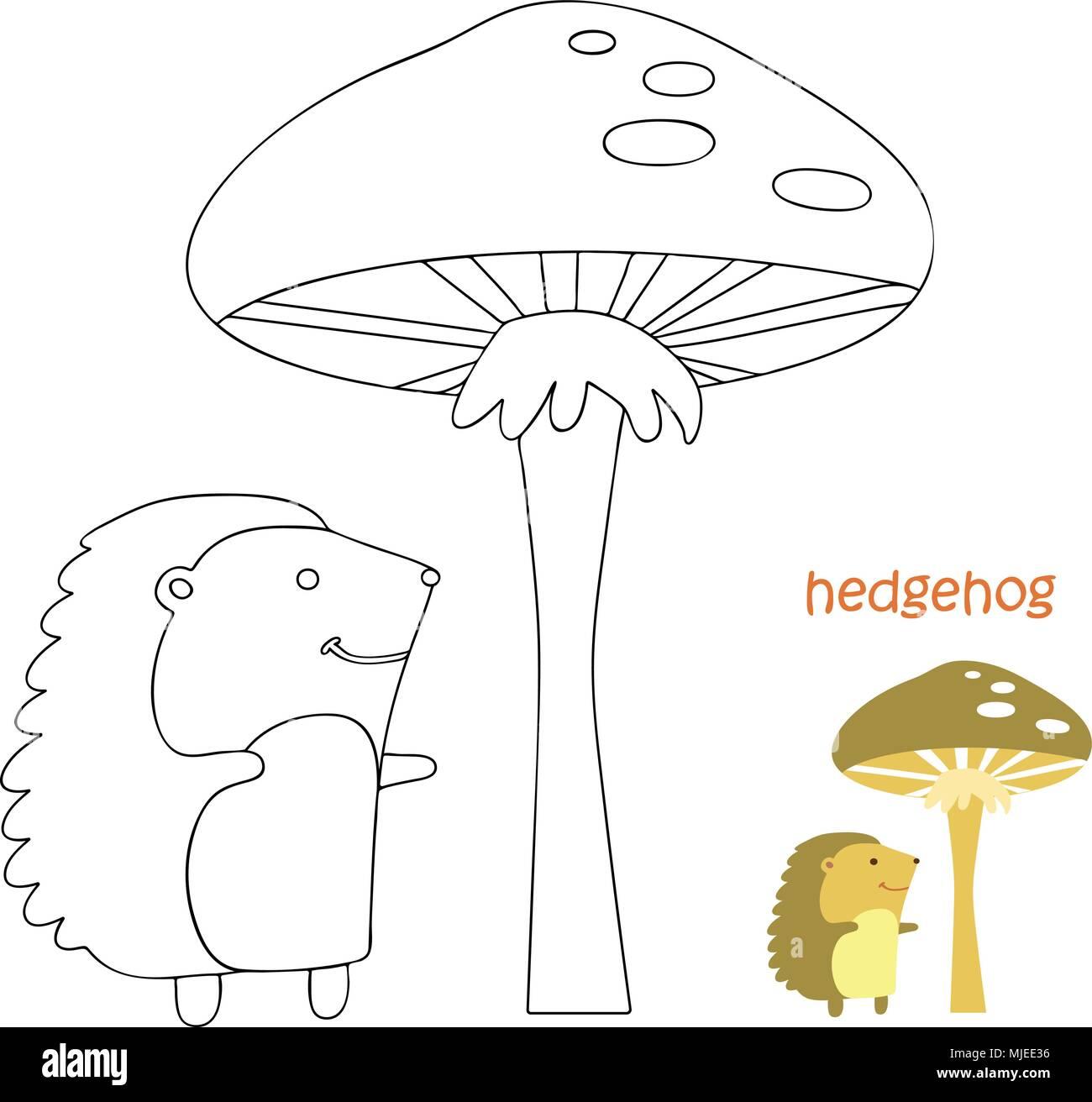 Página Para Colorear Para Niños Erizo Ilustración Del