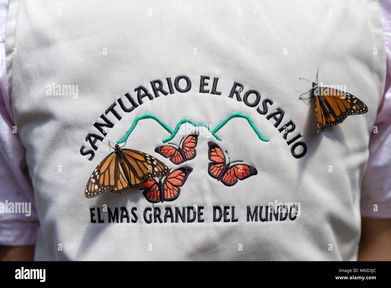 Mariposa Monarca Danaus Plexippus En Warden En La Reserva En
