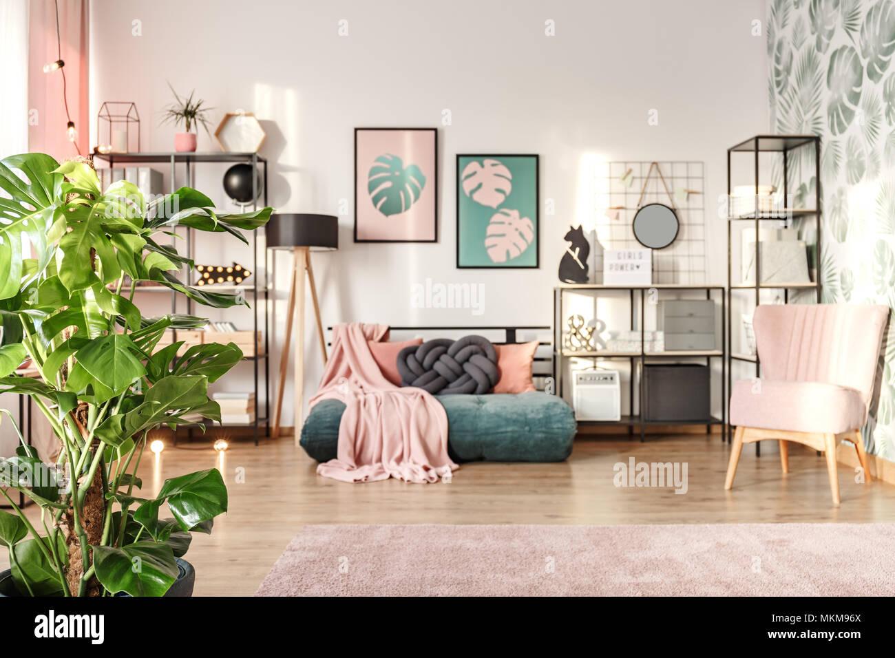 Planta monstera grande en un diseñador salón interior, con un acogedor sofá verde esmeralda y rosa elementos Foto de stock