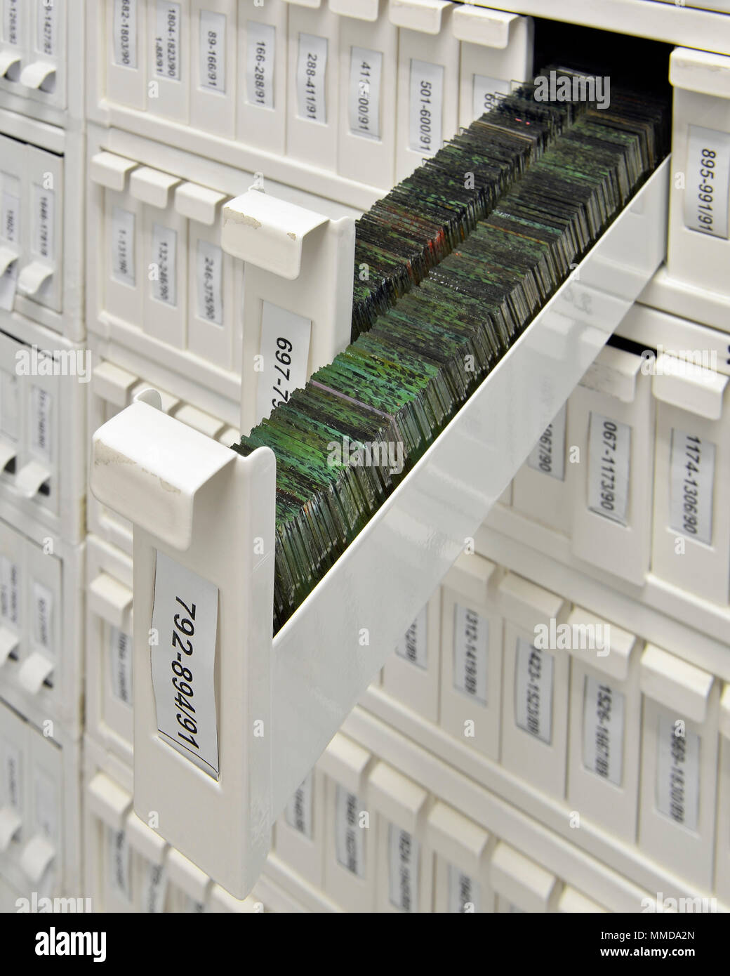 Deslice el armario para almacenar portaobjetos de microscopio Imagen De Stock