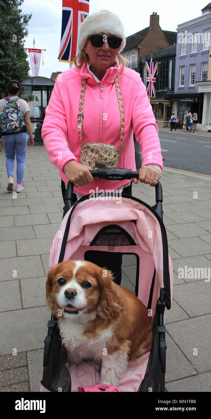 Royal Family Fans Imágenes De Stock & Royal Family Fans Fotos De ...