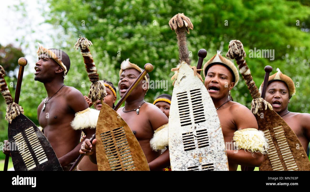Los Leones de Zululandia (una mezcla cultural de músicos y bailarines de Sudáfrica difundiendo la cultura Zulú; www.lionsofzululand.org.uk) realizando durante t Imagen De Stock