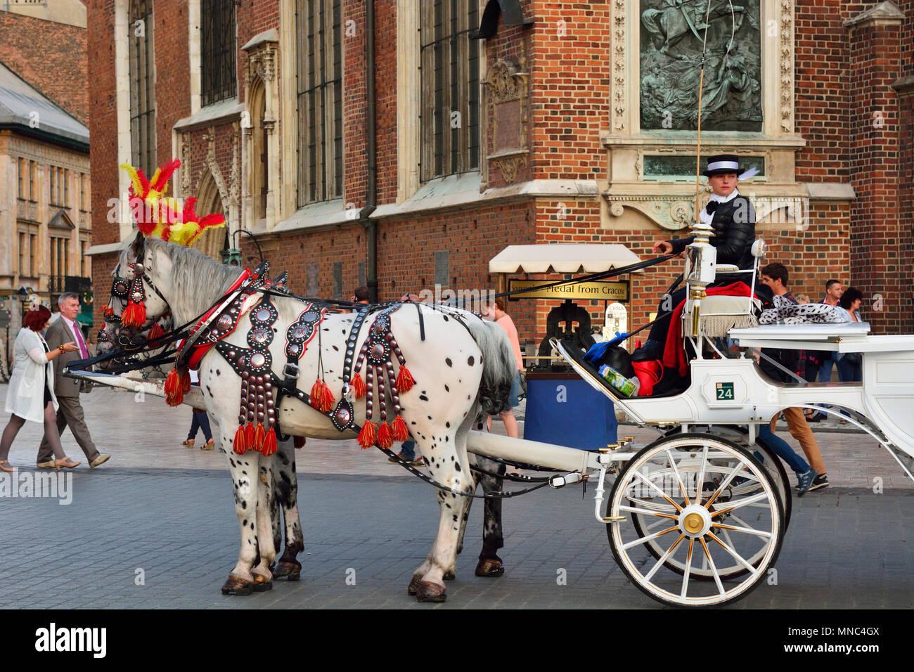 Carruaje de caballos tradicional en la plaza principal de Cracovia. Polonia Imagen De Stock