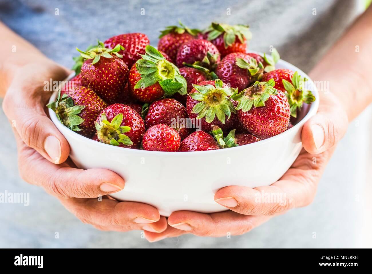 Manos sosteniendo el tazón de fresas frescas Imagen De Stock