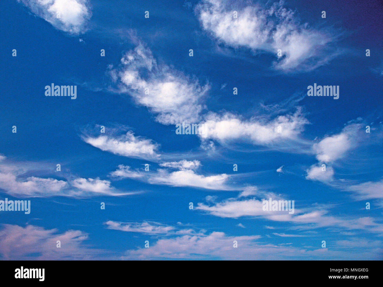 Cielo azul con nubes de buen tiempo. Altocúmulos y Cirrus. Foto de stock