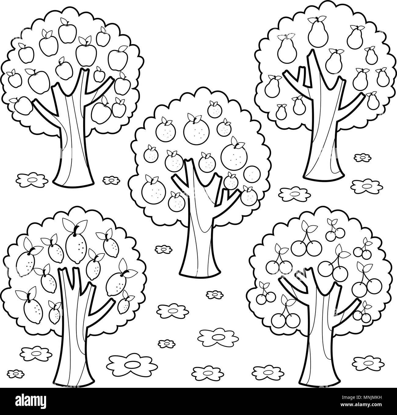 árboles Frutales Libro Para Colorear De Blanco Y Negro Página