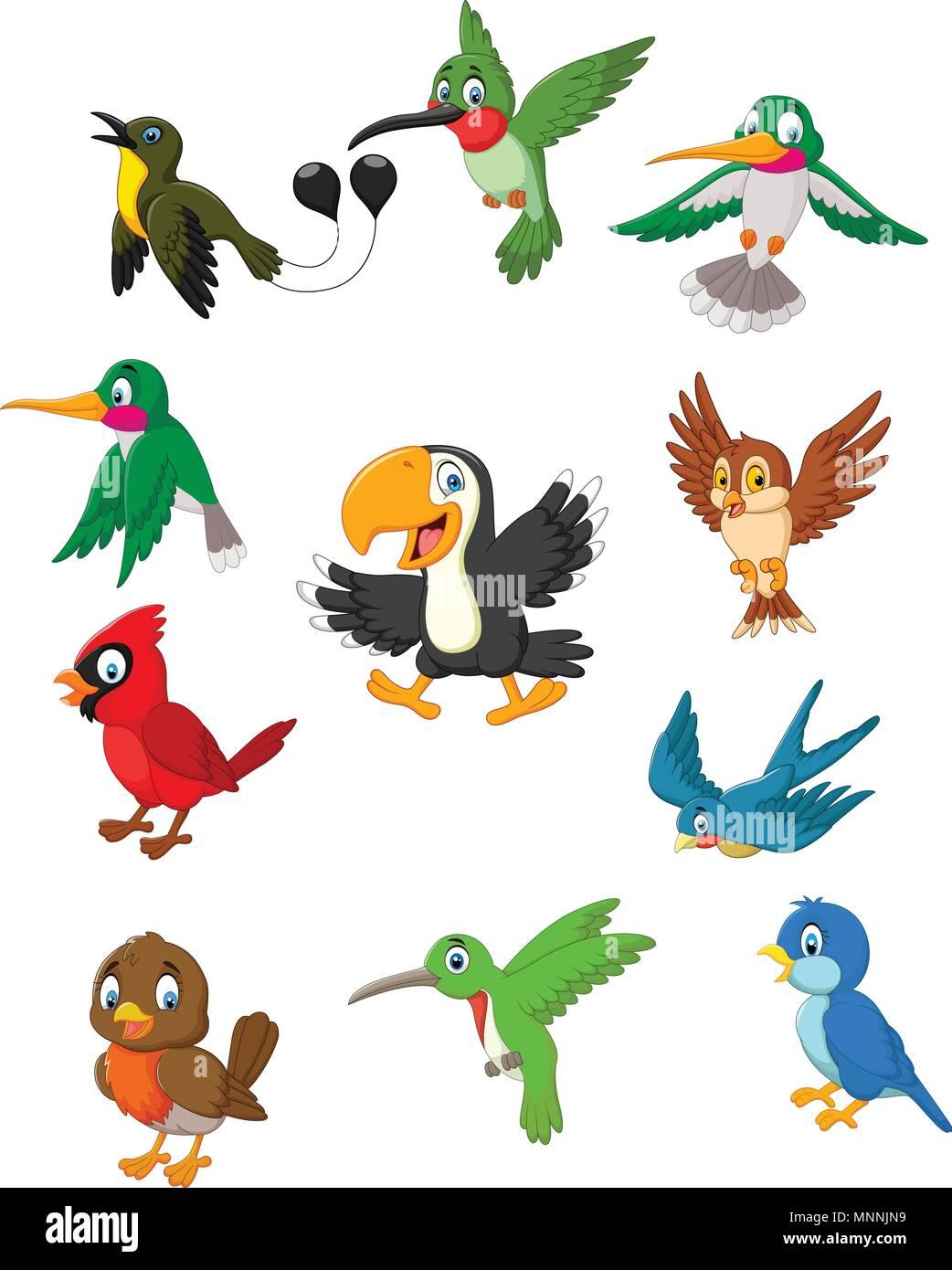 Conjunto De Colección De Pájaros De Dibujos Animados Ilustración Del