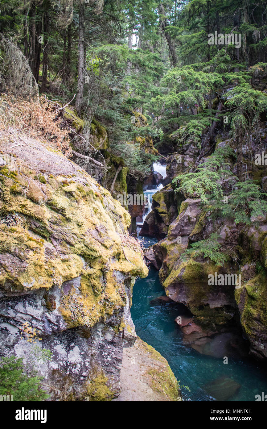 Un arroyo en el Glacier National Park Imagen De Stock