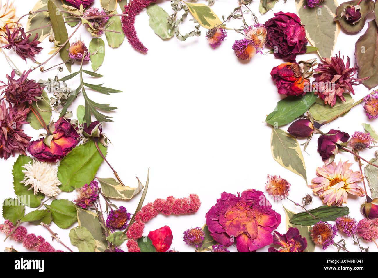 Marco De Flores Secas, Rosas Rosas Rojas Y Hojas Verdes