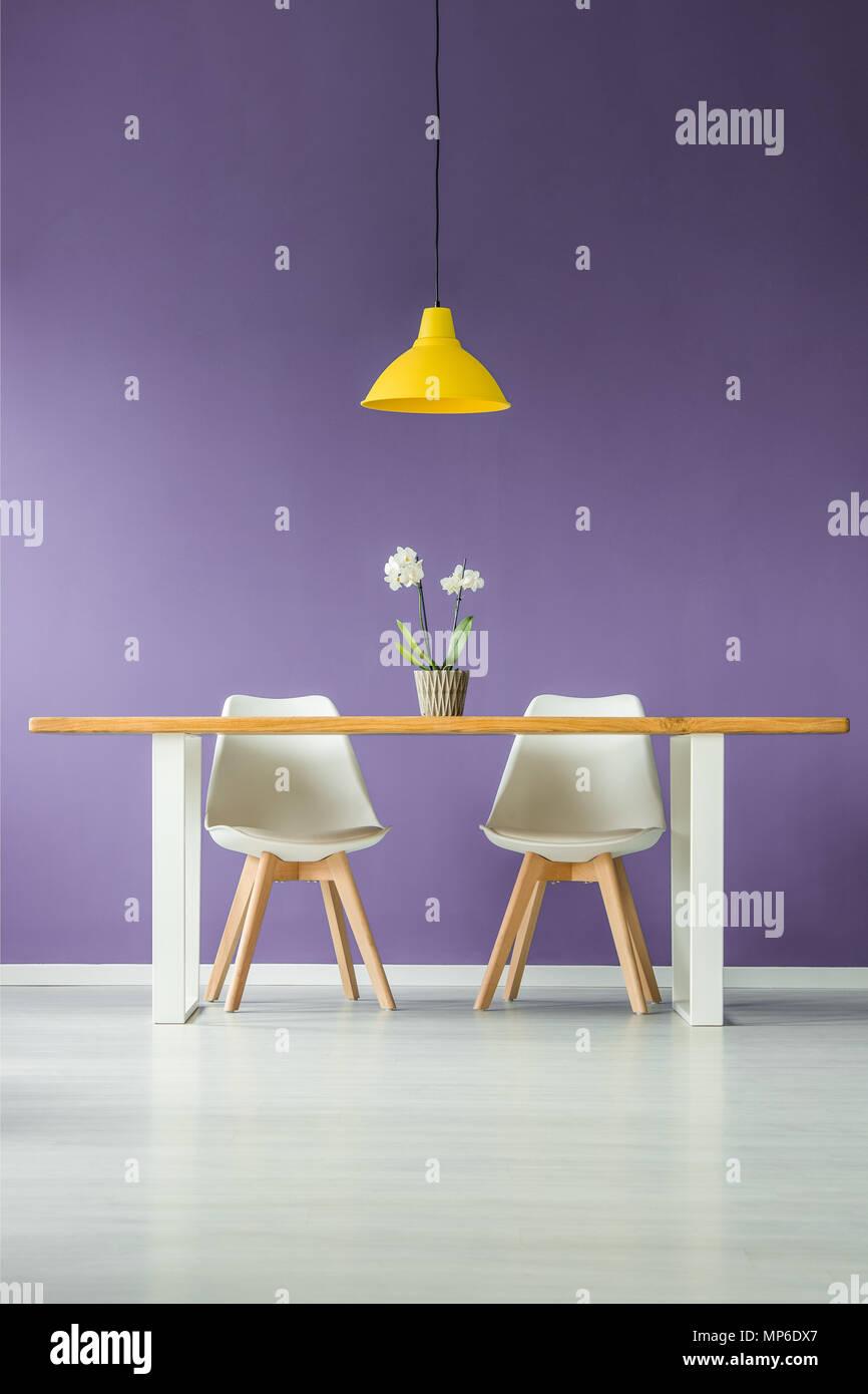 Simétrica, modernos interiores de estilo minimalista, con una vista frontal de dos sillas blancas detrás de una mesa con una flor en una olla y una lámpara amarilla contra un purp Imagen De Stock