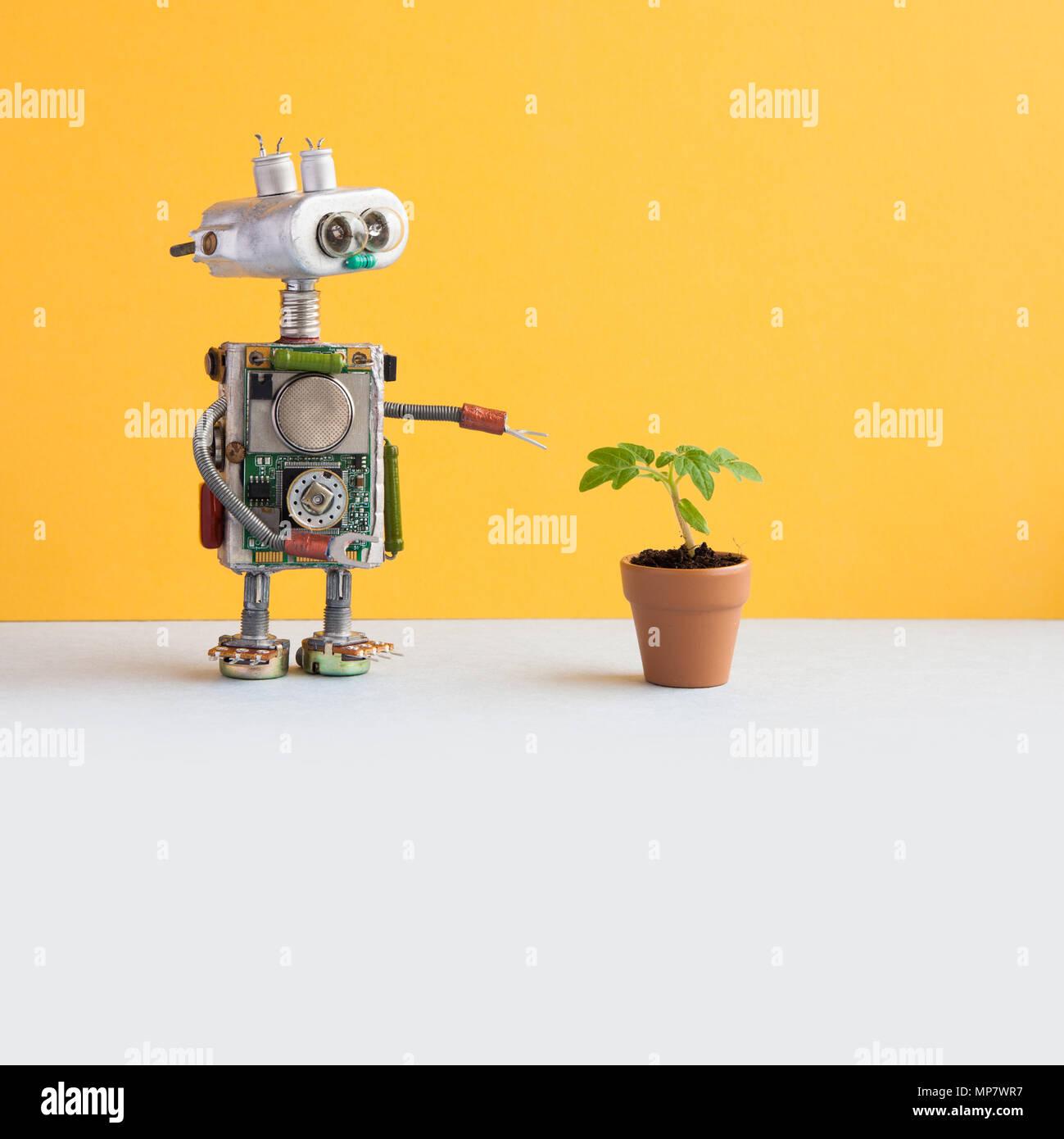 Concepto de biotecnología. Investigador del robot puntos su mano en el green germinan en una olla de barro. Pared amarilla, blanca piso de fondo. Espacio de copia Imagen De Stock