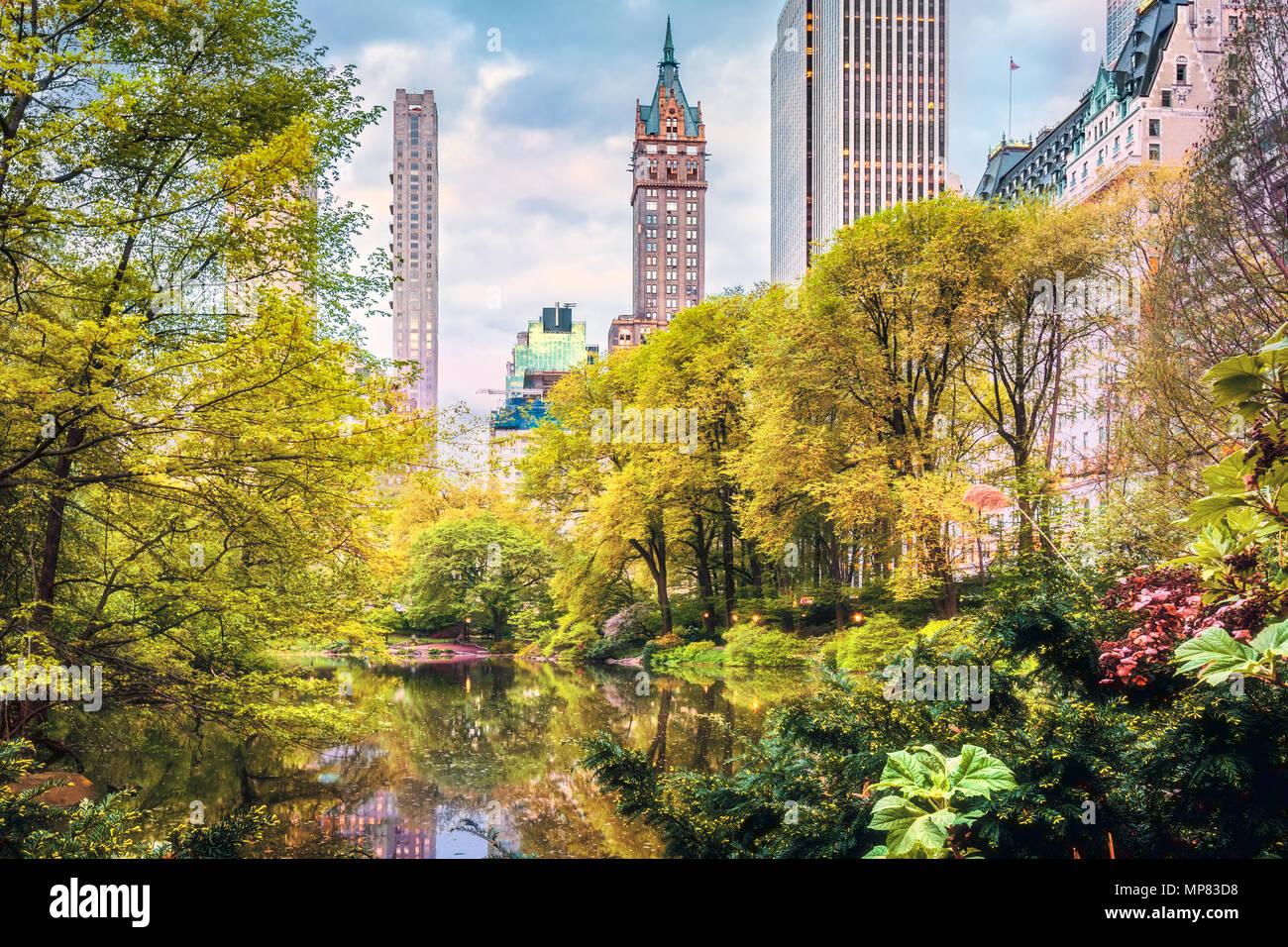 El Estanque en Central Park, New York City Imagen De Stock