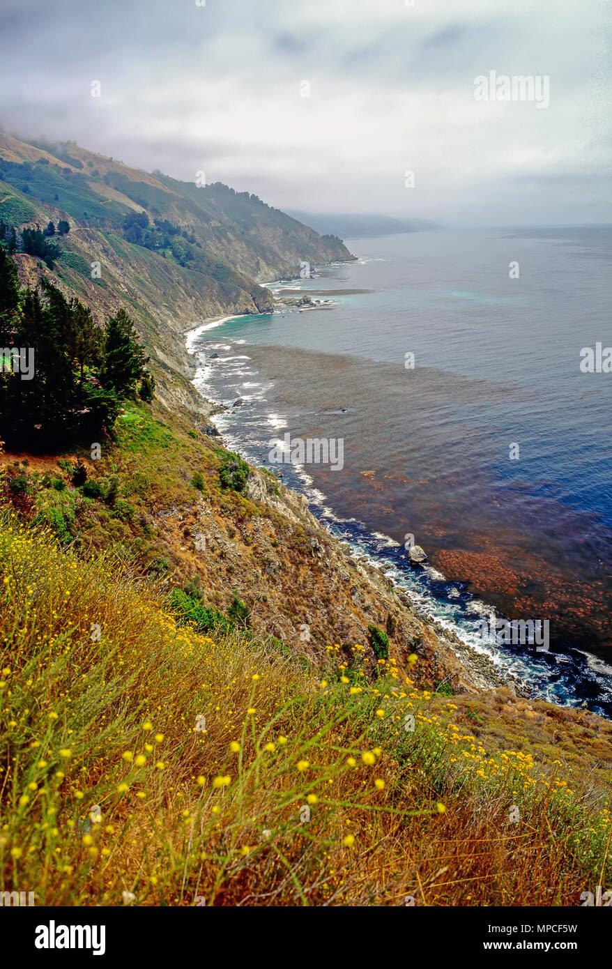 Costa del Pacífico en Big Sur en California Imagen De Stock