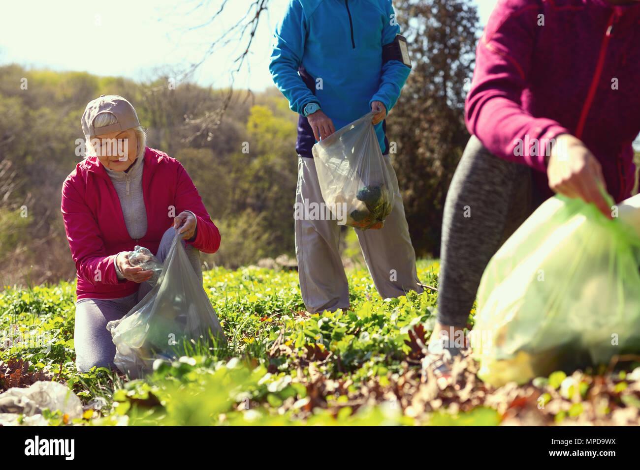 Gozoso encuentro voluntarios de hojarasca en el bosque Foto de stock