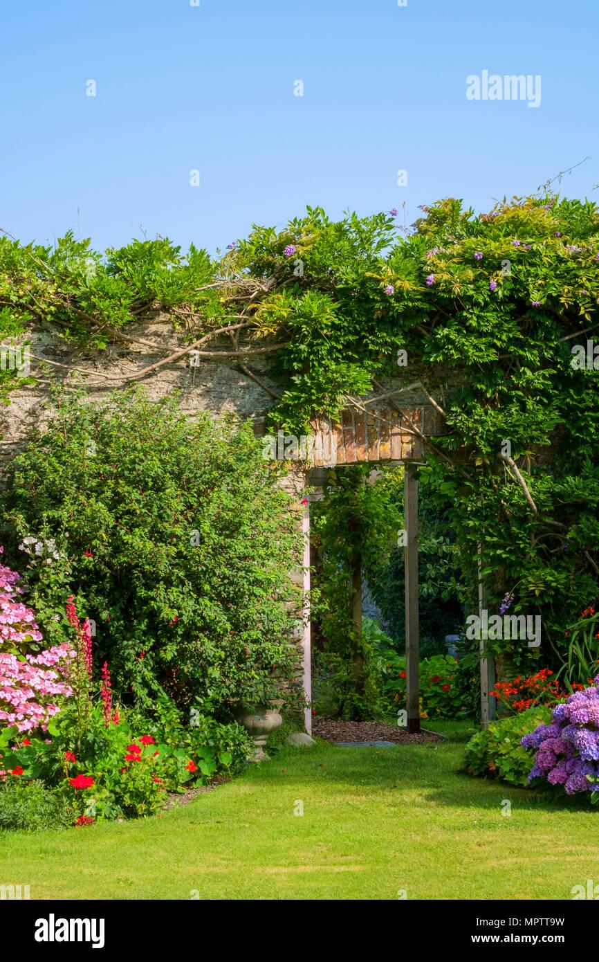 Jardines del Reino Unido. Un hermoso verano walled garden border huerto mostrar incluyendo varios Hortensias. Una puerta abierta muestra un atisbo de una huerta amurallada más allá. Foto de stock