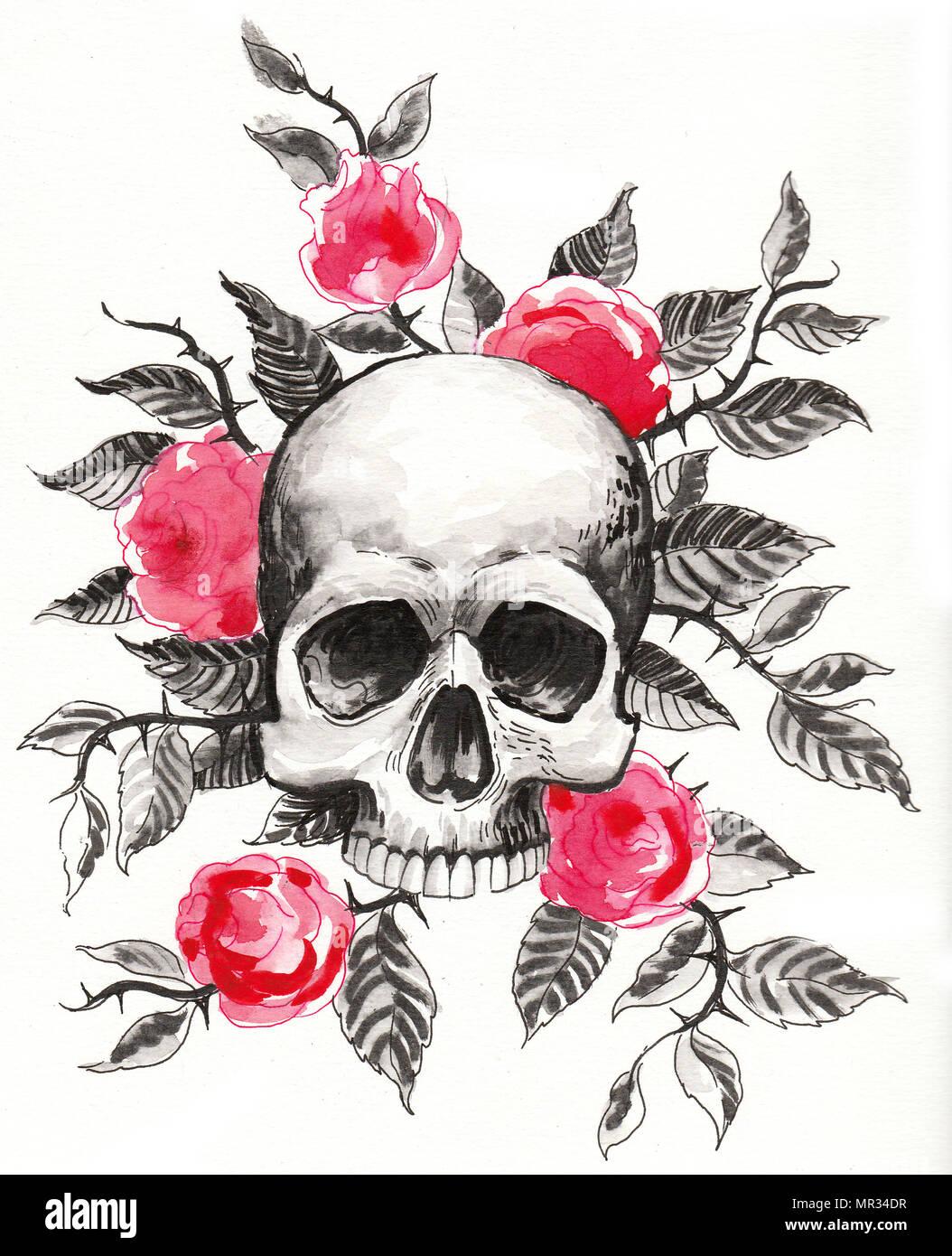 Cráneo Y Rosas Rojas Tinta Y Acuarela Dibujo Foto Imagen De Stock