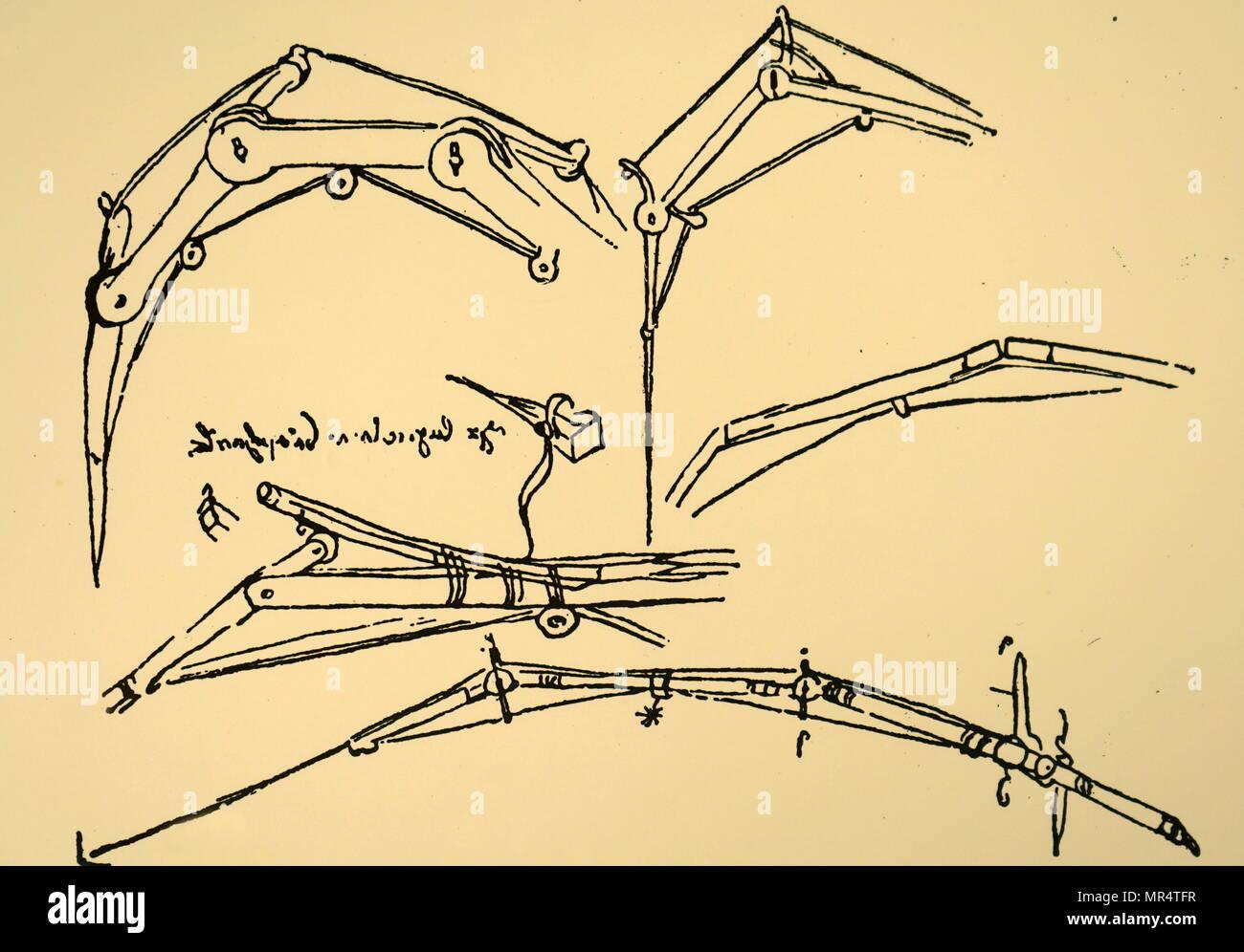 Leonardo Da Vinci Anatomy Imágenes De Stock & Leonardo Da Vinci ...