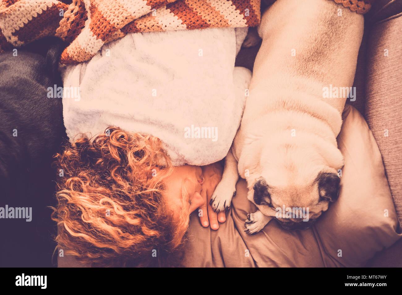 Mejores amigos para siempre con bonito perro pug y hermoso cabello swirl mujer caucásica duermen juntos en la mañana sobre el concepto de amistad absoluta en el sofá. Imagen De Stock