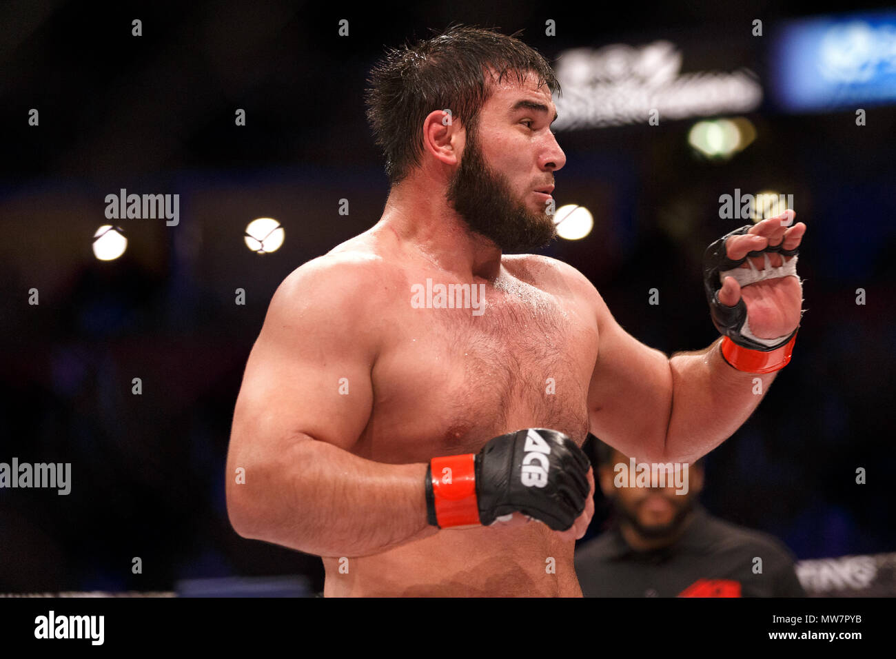 Mukhomad Vakhaev, Artes Marciales Mixtas. Vakhaev ganó el Campeonato de Peso Pesado de ACB en agosto de 2017. Artes Marciales Mixtas, MMA fighter, Campeonato absoluto Berkut. Foto de stock