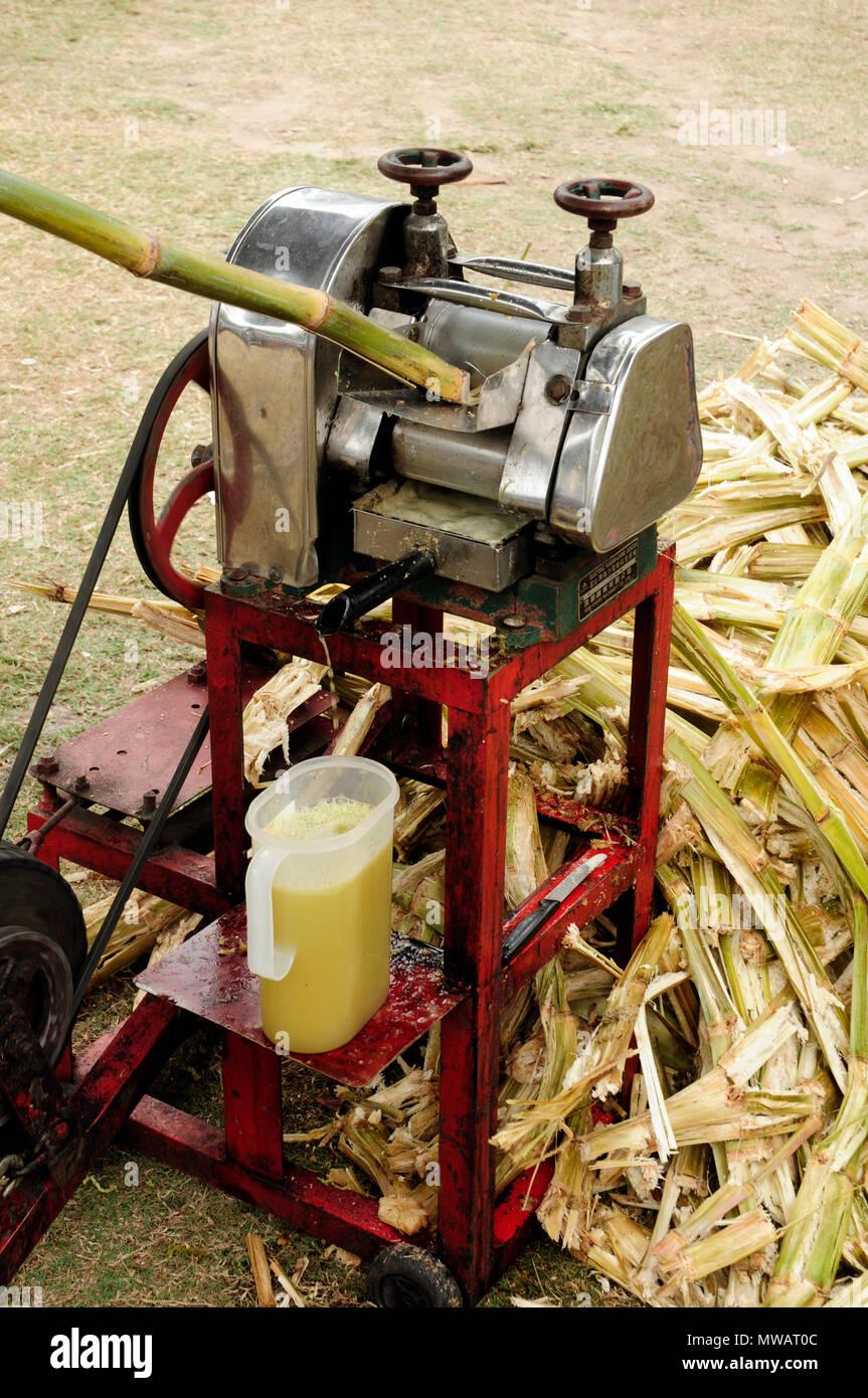Exprimidor de caña de azúcar, mercados, Port Douglas