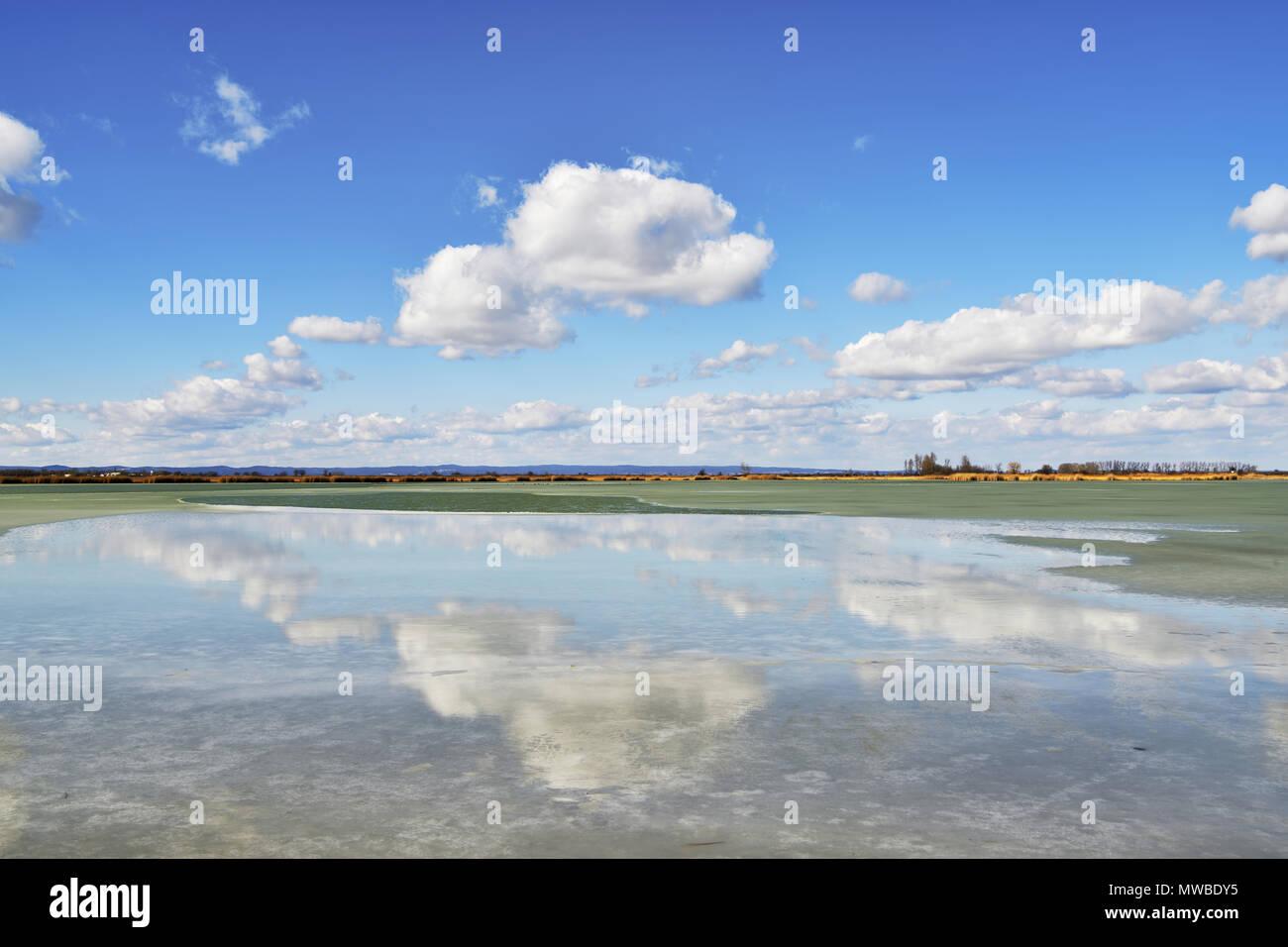 La nube sobre el medio ambiente lago congelado Warmsee, Illmitz, Burgenland, Austria Imagen De Stock