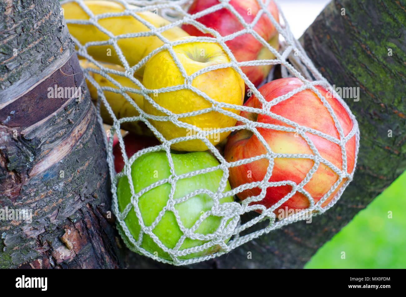 e41c35218 La cadena de moda bolsa con frutas. Bolsa de compras. Acercamiento a la  moda de diseño de estilo de vida. Fruta fresca. Bolsa de tela. Bolsa  ecológica ...