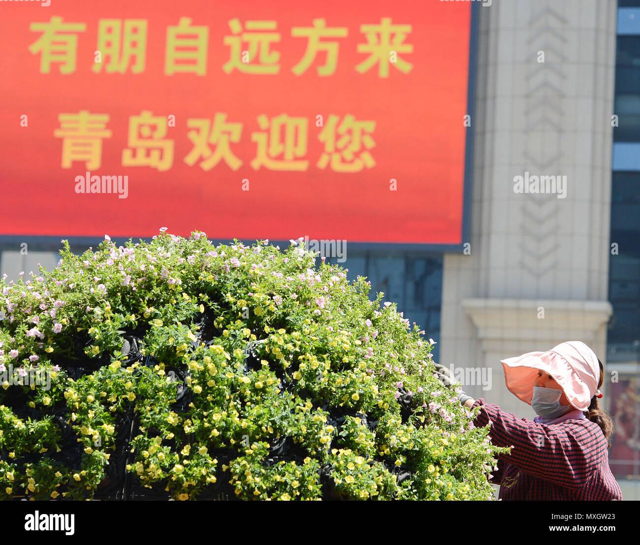 (180604) - Qingdao, 4 de junio de 2018 (Xinhua) -- un jardinero trabaja sobre una calle en Qingdao, Provincia de Shandong, China oriental, 3 de junio de 2018. 18 de la Organización de Cooperación de Shangai (SCO) la Cumbre está programada para el 9 de junio al 10 en la Ciudad de Qingdao. (Xinhua/Sadat) (mcg) Foto de stock