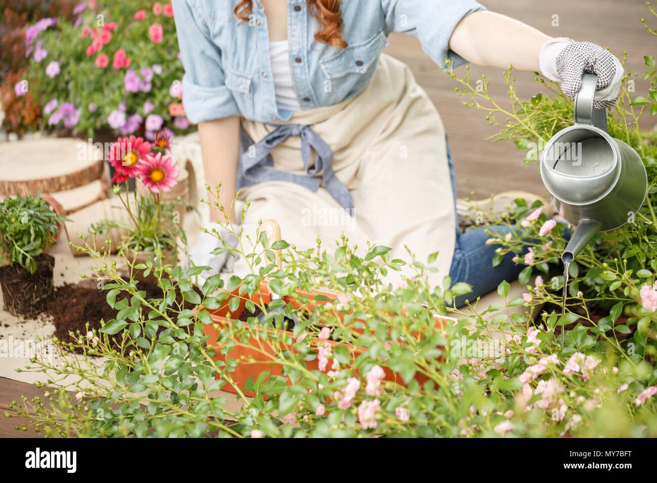Mujer arrodillada sobre una terraza de madera, jardinería y regar las plantas en su traspatio Foto de stock