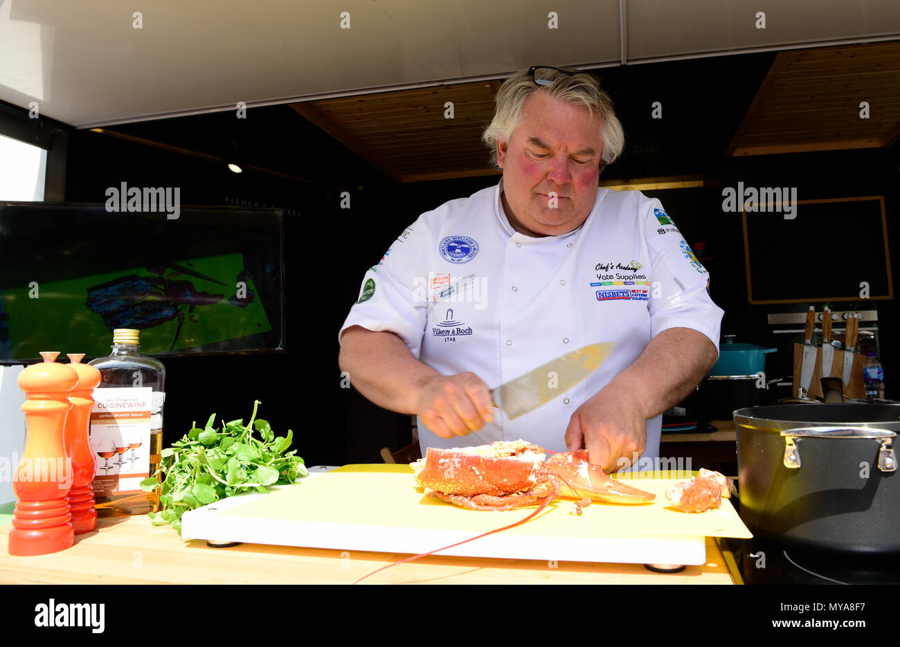Andy Mackenzie, Chef Ejecutivo De La Academia De Chefs Exclusivos, Dando  Una Demostración De Cocina Durante El Festival Anual De Berro, Alresford,  ...