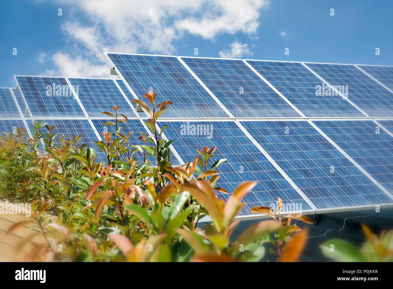 Los paneles solares fotovoltaicos en el techo Foto de stock