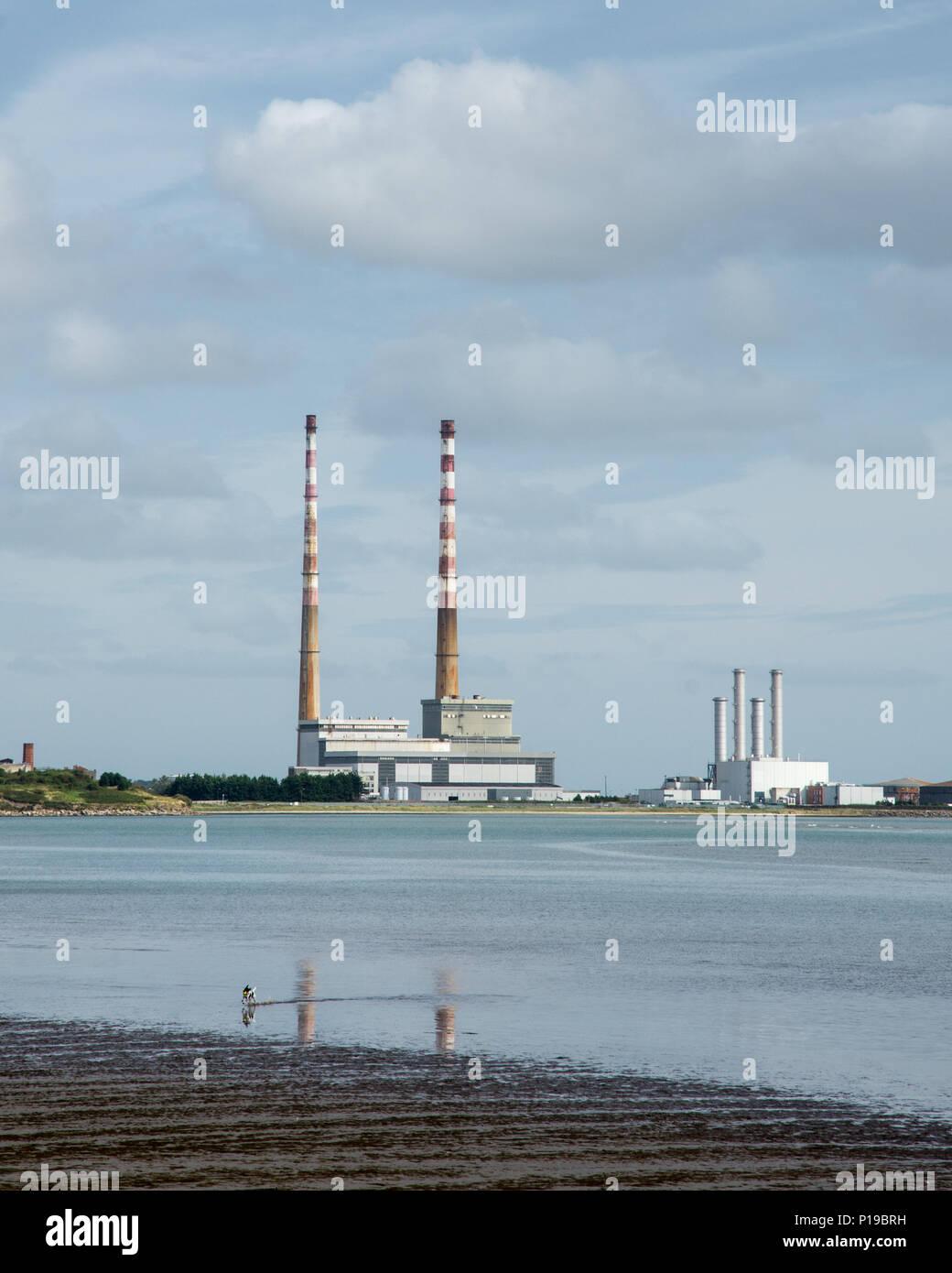 Un perro nadando en la Bahía de Dublín, en la ZPE de Sandymount Strand playa, con el emblemático chimeneas de Poolbeg Twin Power Station subiendo el Puerto de Dublín en la distancia. Foto de stock