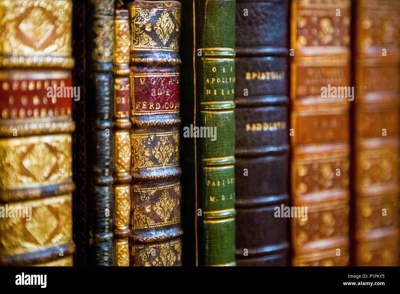 Los Lomos De Tapa Dura Viejos Libros Antiguos En Un Estante Foto