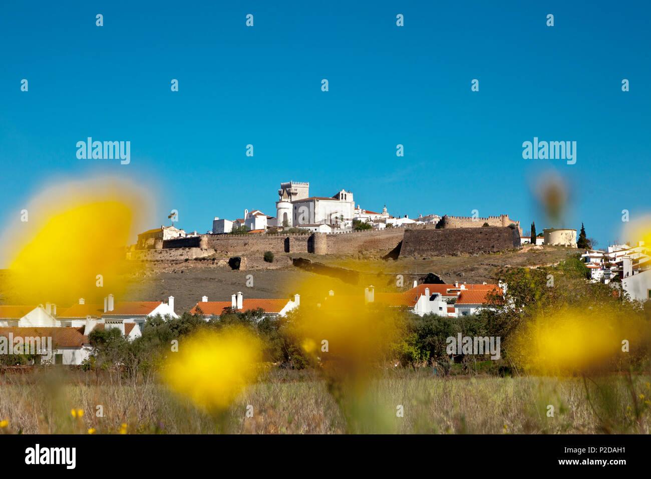 Prado florido en Estremoz, Alentejo, Portugal Imagen De Stock