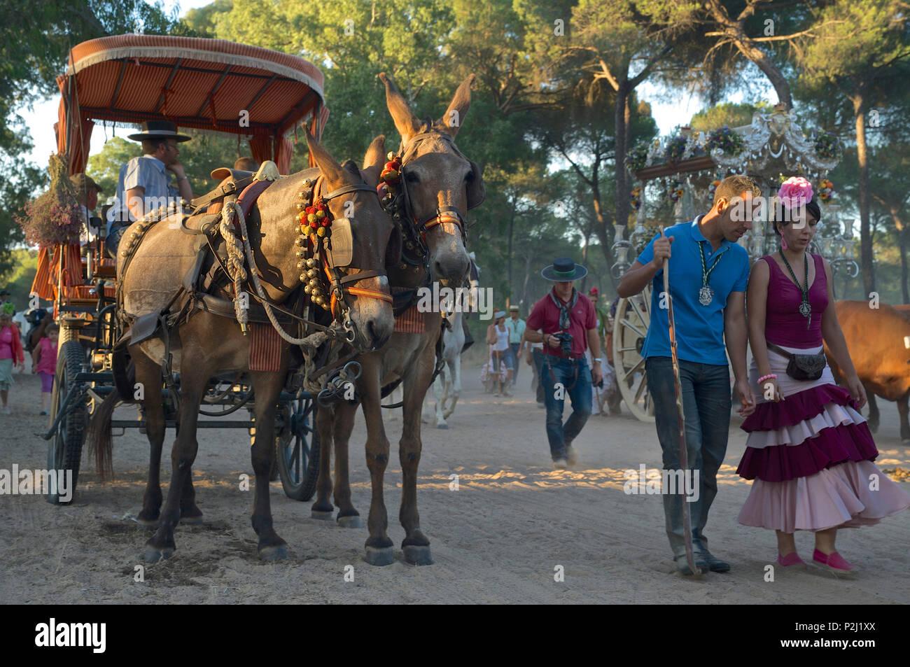 """Los peregrinos con carretas en una peregrinación """"Nuestra Señora de la aldea de El Rocío' en la ruta La Raya Real desde Sevilla hasta El Rocío, Huelva, un Imagen De Stock"""
