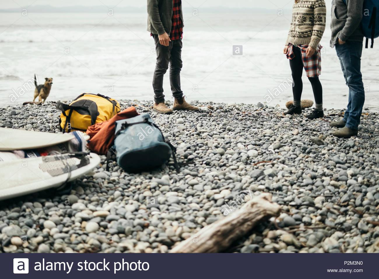 Amigos con perro en la escapada de fin de semana en la playa de surf resistente Imagen De Stock