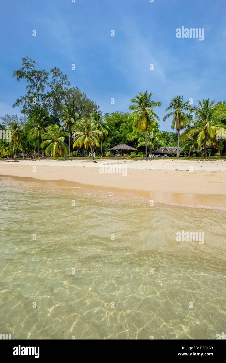 Tailandia, la provincia de Satun, Mu Ko Phetra Parque Nacional Marino Ko Bulon Leh isla, la gran playa de arena blanca en la parte oriental de la isla y el Complejo Pansand bajo los cocoteros Imagen De Stock