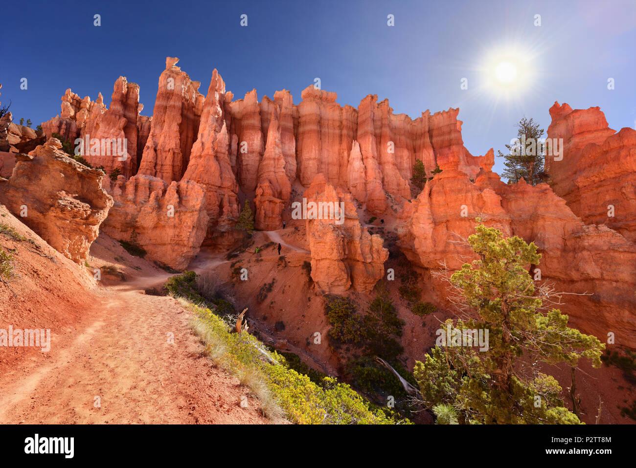 Un sendero entre el pulido hoodoos en el Parque Nacional de Bryce Canyon, Utah, EE.UU. Foto de stock