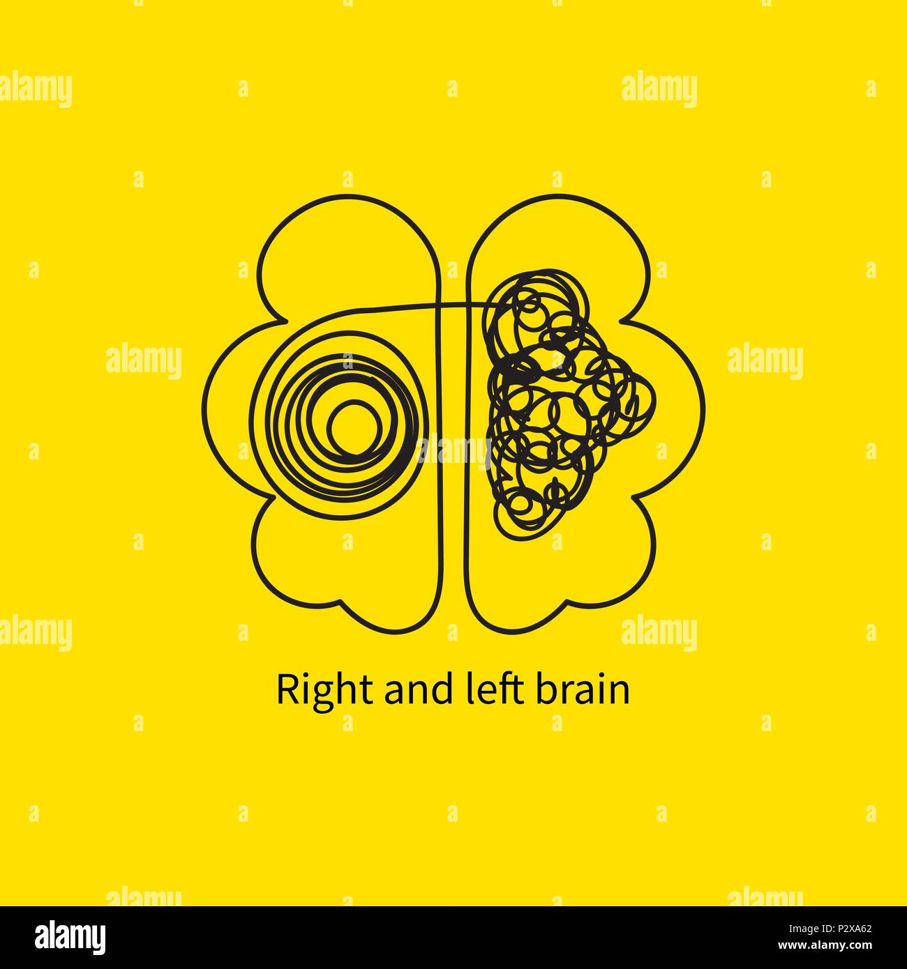 Cerebro izquierdo y derecho Imagen De Stock