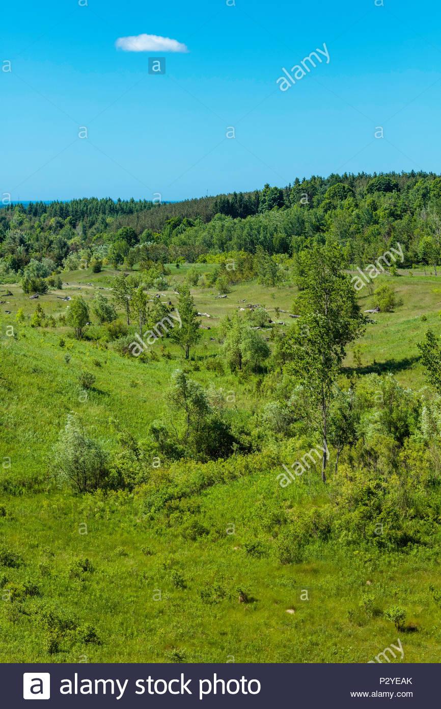 Hoyo agregado en la Oak Ridges Moraine restaurándose rehabilitado cabeceras Duffins oriental región de Durham en Ontario, Canadá Imagen De Stock