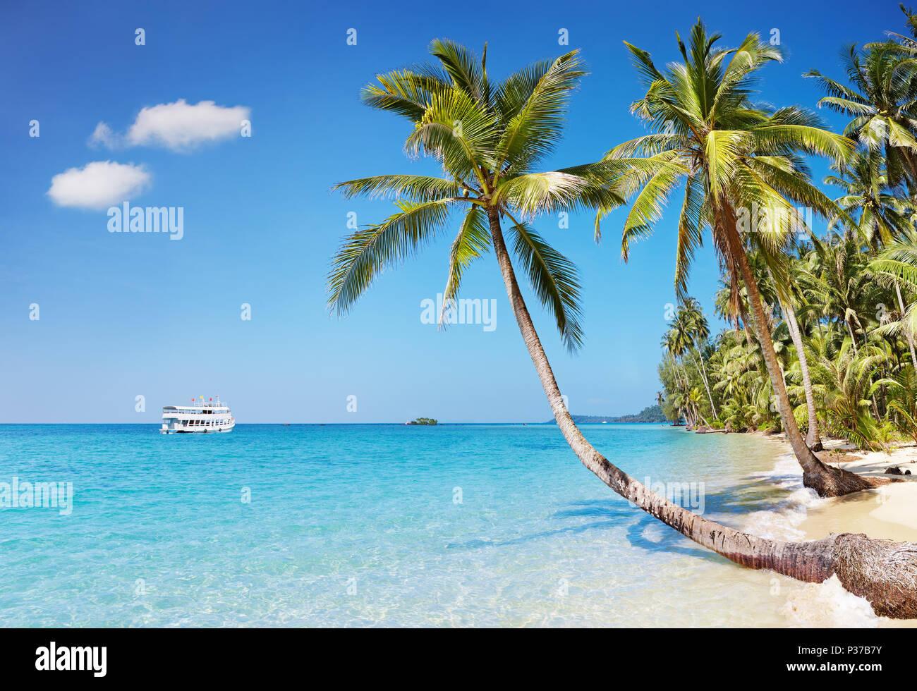 Playa tropical con palmeras, Kood island, Tailandia Imagen De Stock